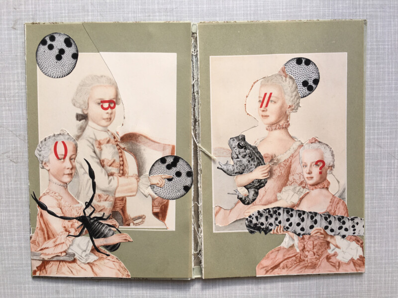 The Unequal Twins by Sabine Remy and Juliette Pestel - 2