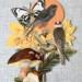 Natur 4 thumbnail